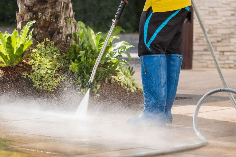 power washing and roof cleaning company